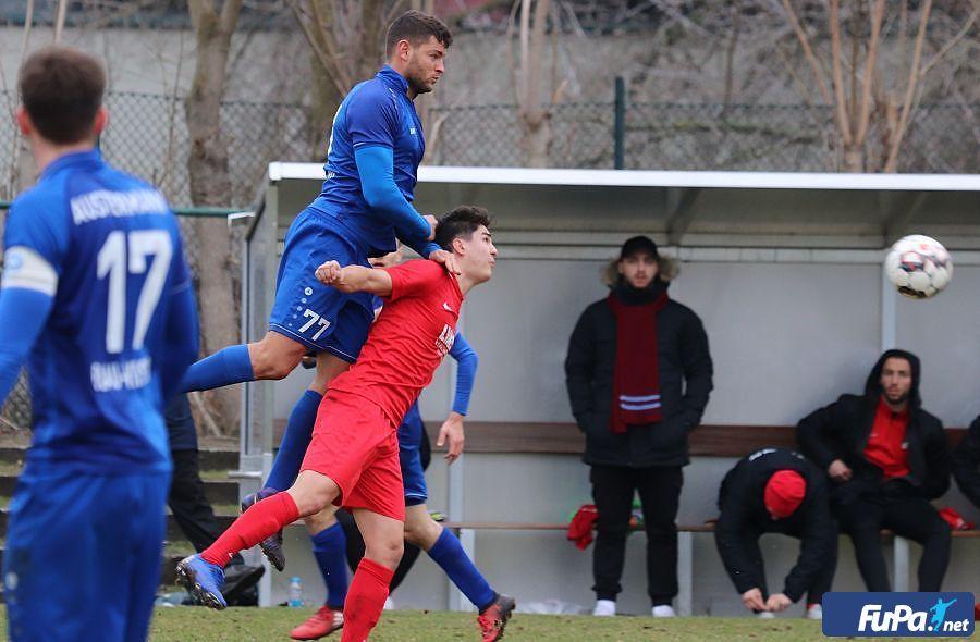 Vorbericht zum Heimspiel gegen den Torgelower FC Greif